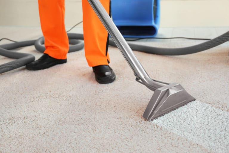 A man cleaning carpet in Christchurch